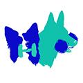 MEGA! Team – szkolenie psów Rzeszów