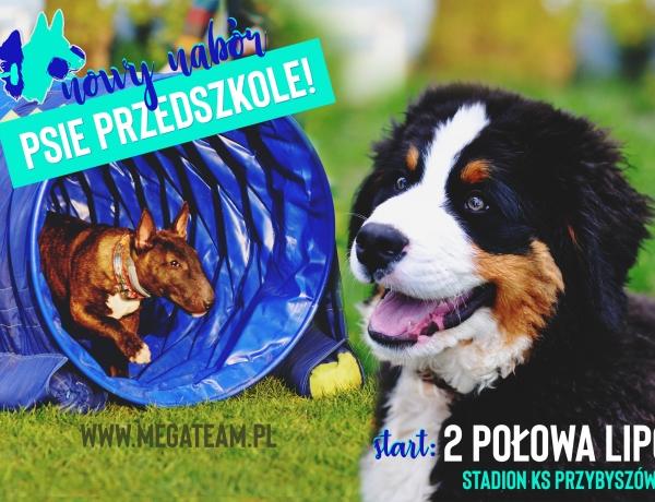 Start nowego psiego przedszkola: II połowa lipca