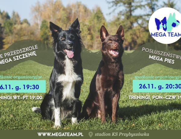 Ostatnie w tym roku kursy MEGA Pies i MEGA Szczenię. Start: 26.11.