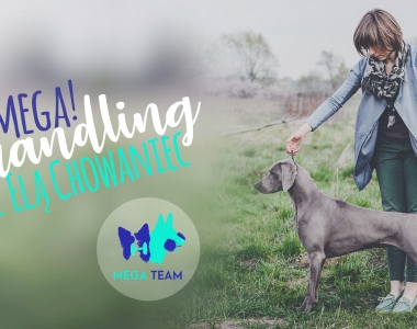 MEGA! Handling z Elą Chowaniec, 17-18.03.2018