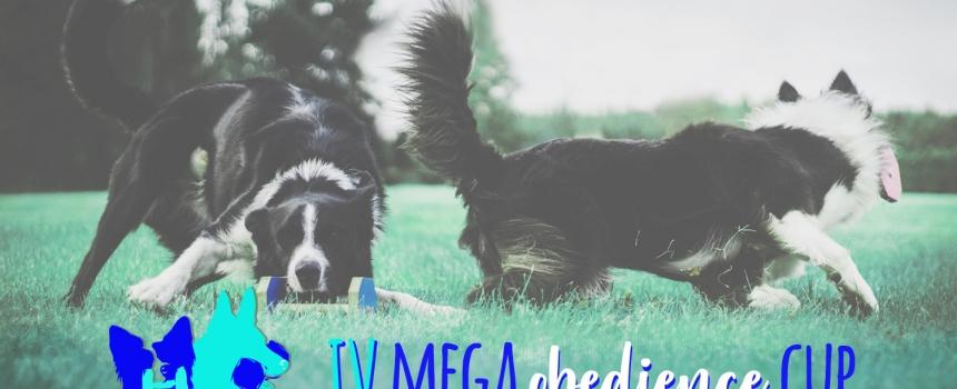 IV MEGA Obedience Cup