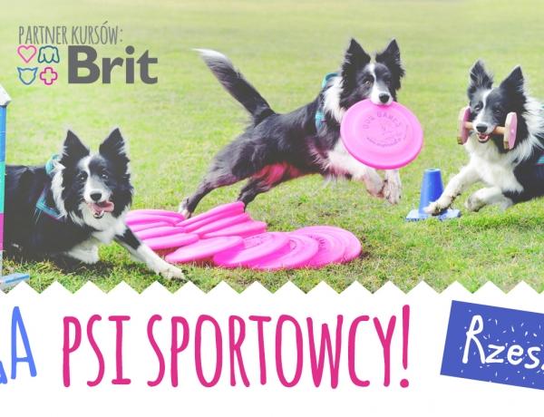 Mega psi sportowcy! Wiosenne kursy sportowe
