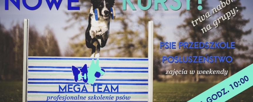 Pierwsze w tym roku kursy grupowe (psie przedszkole, posłuszeństwo)