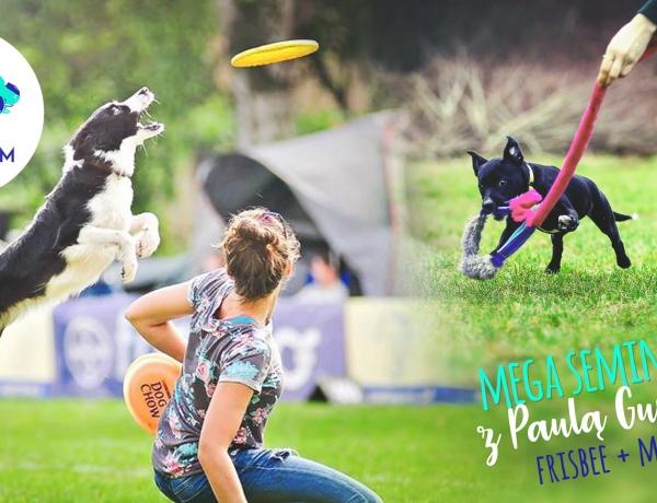 Mega seminarium z Paulą Gumińską – frisbee i motywacja
