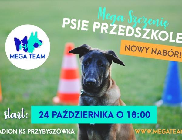 Nowe psie przedszkole – start 24.10 o 18:00