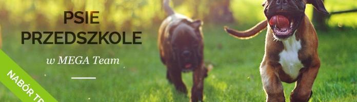 Nabór na psie przedszkole