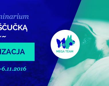 Seminarium z Jirim Scucką – socjalizacja, 5-6.11.2016