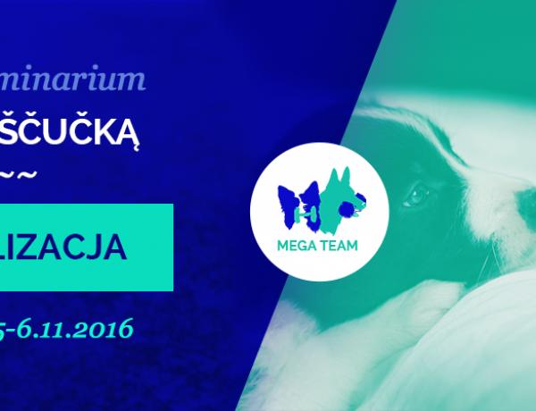 "MEGA Seminarium z Jirim Scucką – ""socjalizacja"""