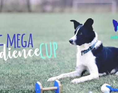 III MEGA Obedience Cup